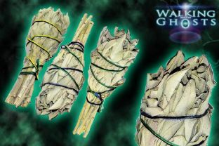 3x Small White Sage Bundle Wand Sticks Smudging Cleansing Ritual